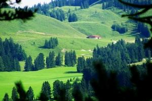 альпійська долина