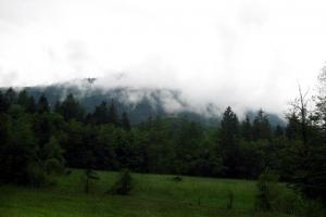 гори димлять