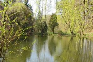 озеро в ботанічному саду