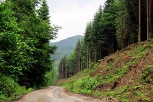 гірською дорогою