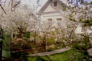 весна в селі