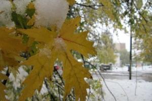 осінь-зима